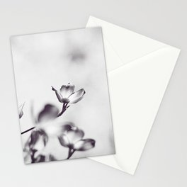 Black and White Floral Dogwood Photography, Grey Spring Flower Tree Branches, Gray Neutral Nature Stationery Cards