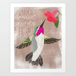 Calliope Hummingbird says... Art Print