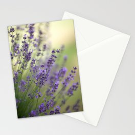 Dream Garden Lavender Stationery Cards