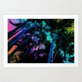 The Palm Trees Under the Seaside Rainbow Art Print