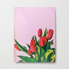 Spring is around Metal Print