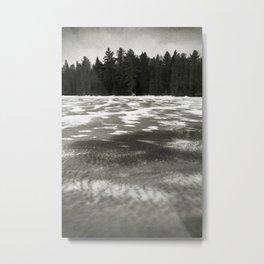 The Beaver Pond - Algonquin Park Metal Print