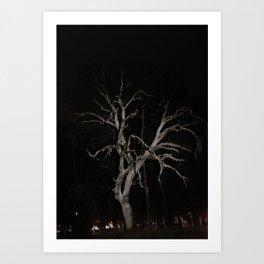 Night Photography Tree Skeleton Art Print