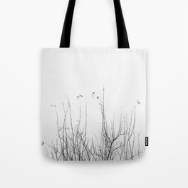 possibly Tote Bag