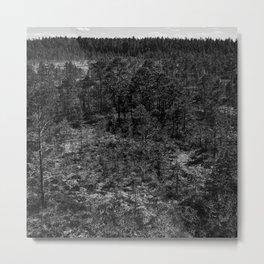 Bog 02 Metal Print