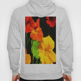 Spring is Here Two Hoody