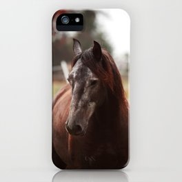 Lusitano iPhone Case