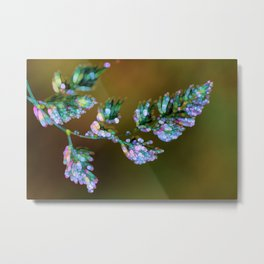 Tropical, feathers and dew Metal Print