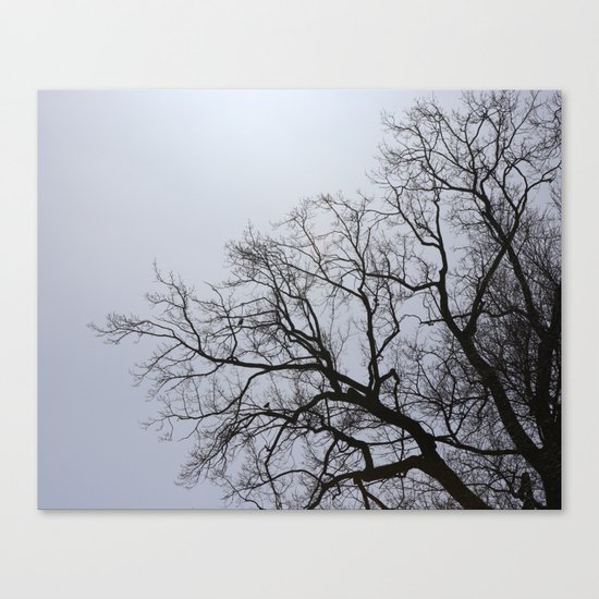 two birds sitting in the tree Canvas Print