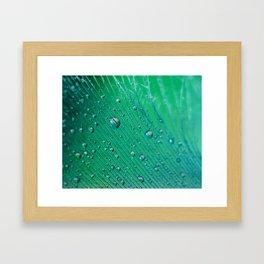 Emerald Feather Framed Art Print