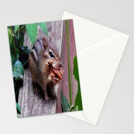 That's a mouthful! Stationery Cards