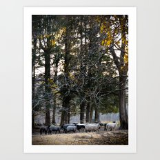 Lil Bo Peep's Forest Sheep Art Print