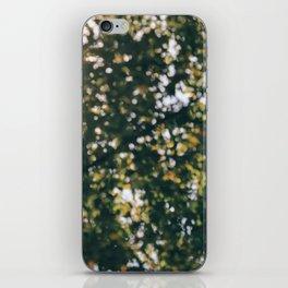 Memory of Summer iPhone Skin