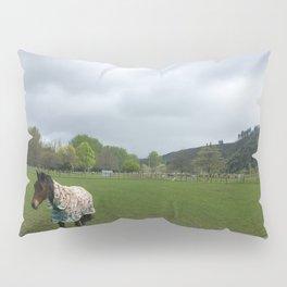 Horse In A Field Pillow Sham
