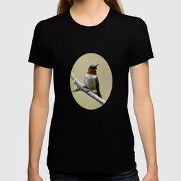 Hummingbird Portrait T-shirt