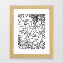 Succulent Line Drawing Framed Art Print