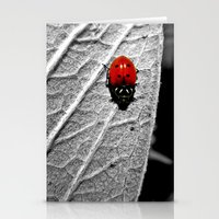 ladybug Stationery Cards featuring Ladybug by Derek Fleener