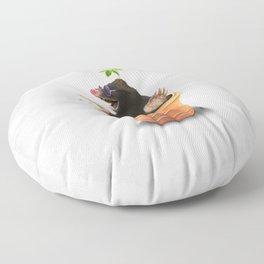 Pot Floor Pillow