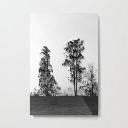 Trees in Black and White Photography Manipulation Metal Print