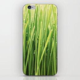 Green Green Grass iPhone Skin