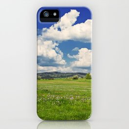 Gluszyca iPhone Case
