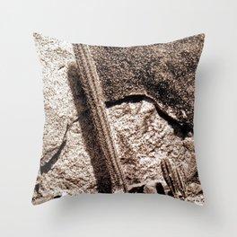 ARUBA1 Throw Pillow
