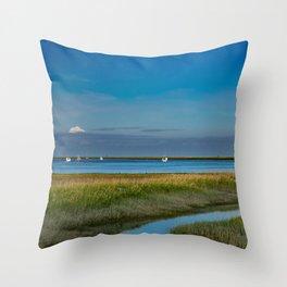 Kenai Dock/Boat Ramp with Mt._Redoubt - Alaska Throw Pillow