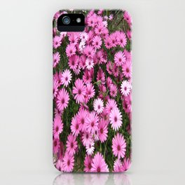 DAISIES IN PINK iPhone Case