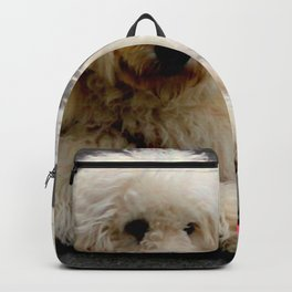 See My New Paw-dicure? Backpack