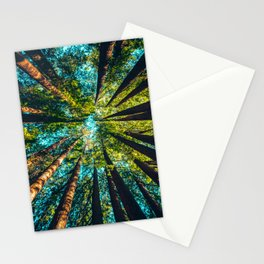 Looking Up At Trees In A Dense Forest Stationery Cards