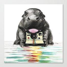 Baby Hippo Canvas Print