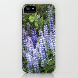 Lupins in Blue and Purple iPhone Case