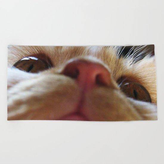 Funny Cute Cat Macro Eyes Beach Towel