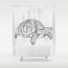 Tortoise Shower Curtain
