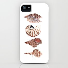 4 SEASHELLS iPhone Case