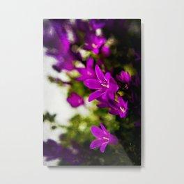 violette Metal Print
