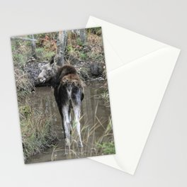 Moose Calf Stationery Cards