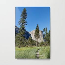 Yosemite Views Metal Print