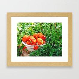 Garden Goodies Framed Art Print