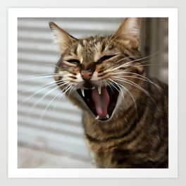 Tabby Cat Yawn Artistic Portrait Art Print