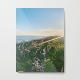 Dust in the Wind Take III Metal Print
