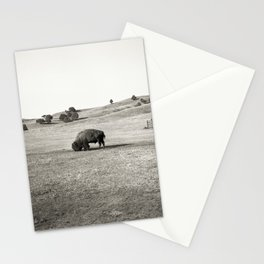 Free Bison, Penned Horses Stationery Cards