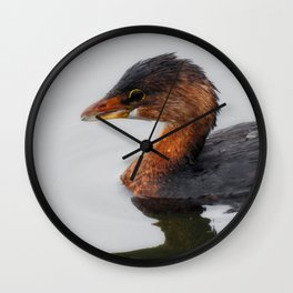 Pie-billed Grebe Wall Clock