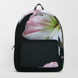 The Amaryllis Backpack