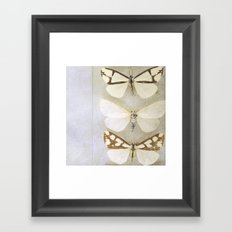 Moth Wings Framed Art Print