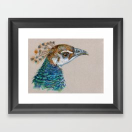 Peacock CC006 Framed Art Print