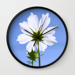 White Cosmos Flower Wall Clock