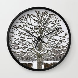 Pollarded tree Wall Clock