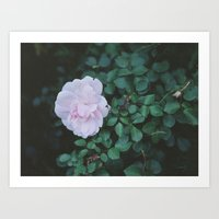 poetry Art Prints featuring poetry by karkova