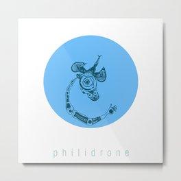 philidrone Metal Print
